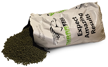 open-thrivefeed-bag